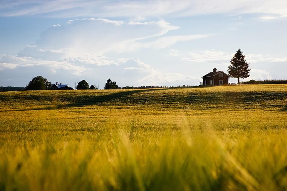 農地持分貸款是什麼?看完這篇直接讓你變持分農地專小博士